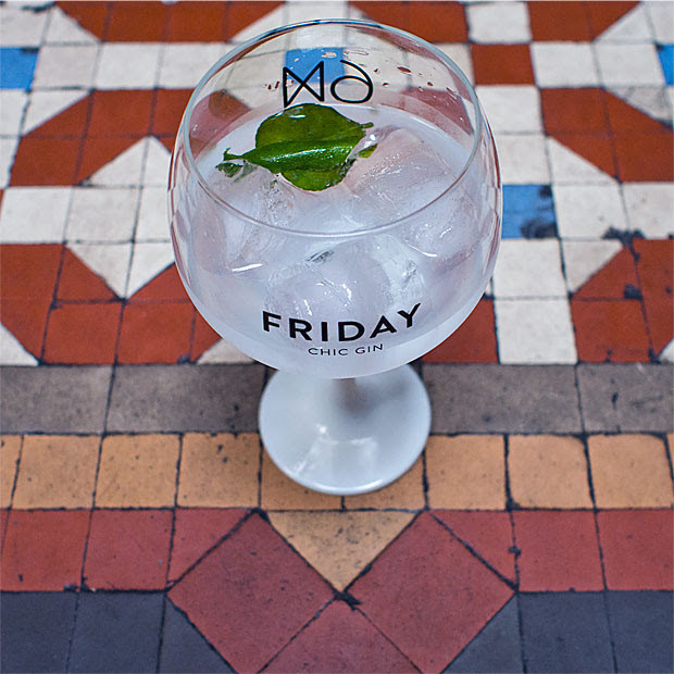 Friday_Chic_Gin_16